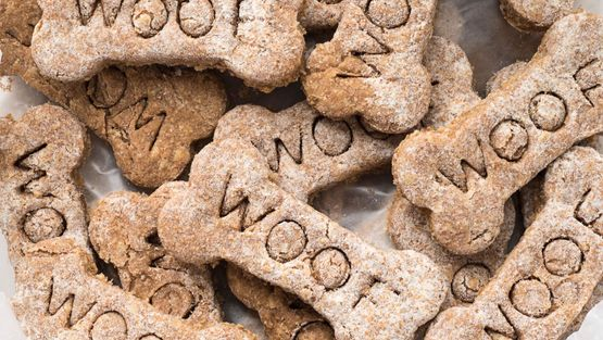 Close up image of dog treats